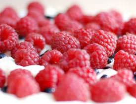 Antioxidant Supplments for Protection Against Cancer & Aging